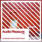 Audio Pleasure Vol 4