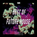 Best Of Future House Vol 23