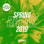 Spring Break 2019 (Best Of Dance, House & Electro)