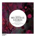 Melodious Sounds Vol 6