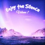 Enjoy The Silence Vol 7