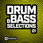 Drum & Bass Selections Vol 01
