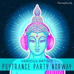 Psytrance Party Norway 1