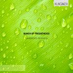 Raindrops (Remixes)