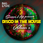 Seamus Haji Presents Disco In The House Vol 2 (unmixed tracks)