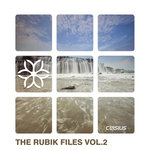 Various: The Rubik Files Vol 2