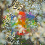 Four Tet: Teenage Birdsong
