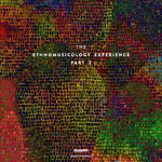 The Ethnomusicology Experience Part 2