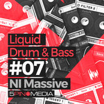 Liquid Drum & Bass NI Massive (Sample Pack Massive Presets)
