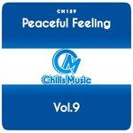 Peaceful Feeling Vol 9