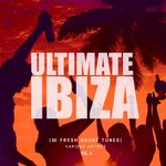 Ultimate Ibiza Vol 3 (50 Fresh House Tunes)