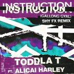 Instruction (Gallong Gal)