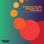 Kobe Jt/Minista/Scott Diaz/Witchdoctor: Strictly Flava Remixes Vol 2