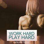 Work Hard Play Hard Vol 3
