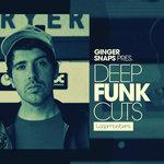 Deep Funk Cuts (Sample Pack WAV/APPLE/LIVE/REASON)