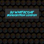 Bongos From London