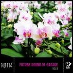 Future Sound Of Garage Vol 5