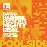 Mighty Real Pool Side Pride 2019