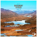 Different Styles Vol.8