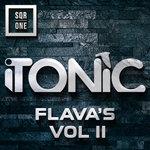 Tonic Flava's Volume 2
