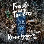 Freude Am Tanzen Reminiscence Of 2013