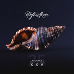 Cafe Del Mar XXV (Vol 25)