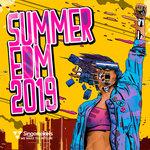 Summer EDM 2019 (Sample Pack WAV/APPLE/LIVE/REASON)