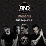BND Project Vol 1