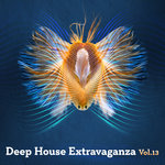 Various: Deep House Extravaganza Vol 13