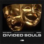 Divided Souls (Explicit)