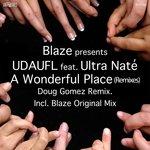 A Wonderful Place (Remixes)
