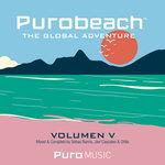 Purobeach Vol  Cinco The Global Adventure