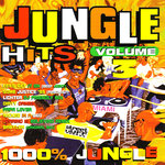 Jungle Hits Vol 3