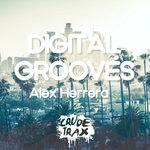 Digital Grooves