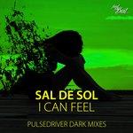 I Can Feel (Pulsedriver Dark Mixes)