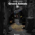 Groove Animals 16