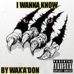 I Wanna Know (Explicit)
