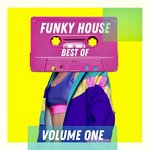 Best Of Funky House - Volume One