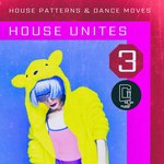House Unites: Pattern 3