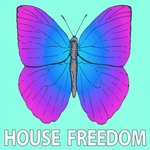 Freedom Minimal