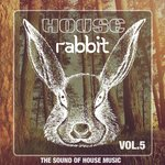 House Rabbit Vol 5