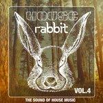 House Rabbit Vol 4
