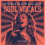 Underground Soul Vocals (Sample Pack WAV)
