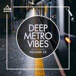 Deep Metro Vibes Vol 25