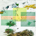 University Of Ambiance Vol 2.5 (Explicit)