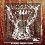 House Rabbit Vol 7