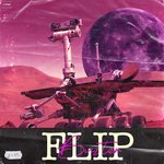 Flip (Extended Mix)