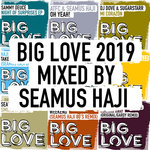 Big Love 2019 Mixed By Seamus Haji
