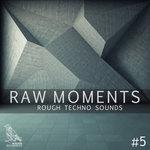 Raw Moments Vol 5 - Rough Techno Sounds