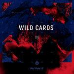 Wild Cards 06
